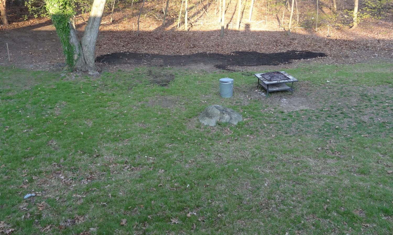 yardwork the woodmans